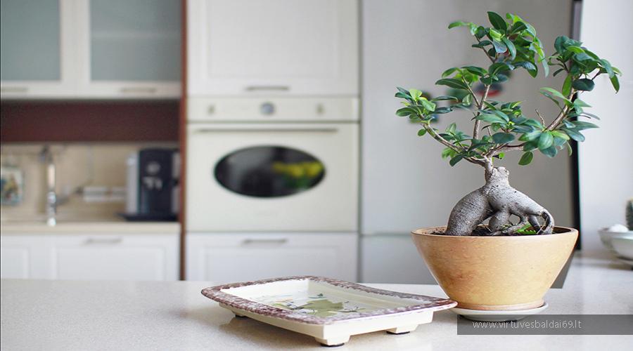 nebrangus-virtuves-baldai